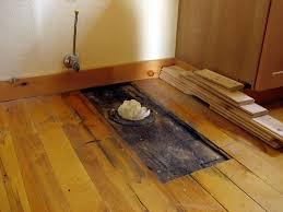 mold on hardwood floor carpet carpet vidalondon