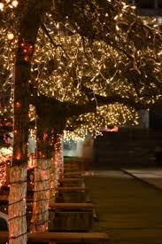 the 25 best outdoor tree lighting ideas on pinterest outdoor