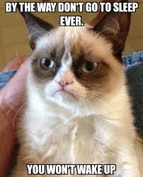 Go To Bed Meme - grumpy cat by the way don t go to sleep ever you won t wake up