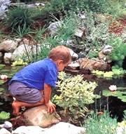 Aquascape Canada Aquascape Ontario Ltd Changing The Way Canada Builds Ponds