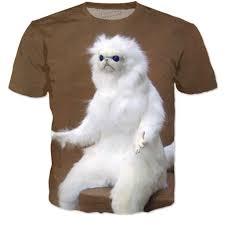 Persian Cat Meme - cat room guardian