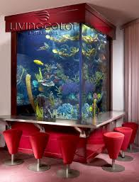 aquarium tennessee and octopus on pinterest idolza