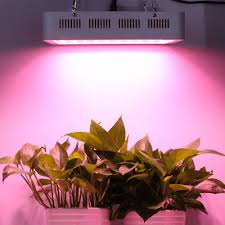compare prices on hydroponic garden design online shopping buy