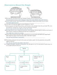 chapter 16 worksheets