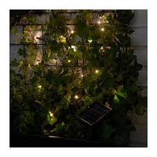Solar Lights For Backyard Solarvet Led Light Chain With 24 Lights Ikea