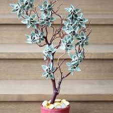 wedding gift of money a money tree is a great way to give as a present crafts