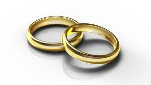 wedding gold rings free illustration rings wedding gold free image on