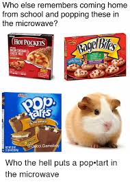 Pop Tarts Meme - 25 best memes about pop tarts pop tarts memes