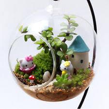 round terrarium vases ebay