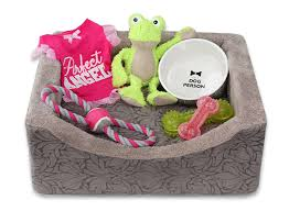 Dog Bed With Canopy Dog Bed And Toys Ross Stores Inc