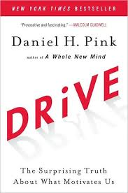 Dave Barnes What We Want What We Get Drive The Surprising Truth About What Motivates Us By Daniel H