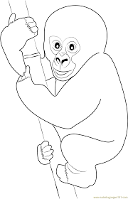cute gorilla baby coloring page free gorilla coloring pages