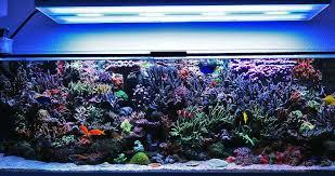 24 aquarium light bulb t5 aquarium fixture ho quad aquarium fish tank light lighting