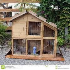house cage for guinea pigs stock photo image of closeup 27484476
