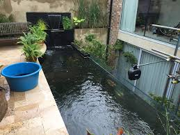 100 how to make an indoor fish pond nypa opens new nicandri