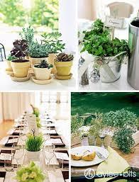 Centerpieces Ideas The 25 Best Potted Plant Centerpieces Ideas On Pinterest Herb