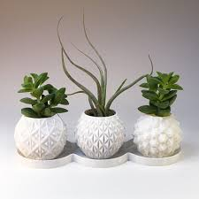 concrete succulent planter diy mini planter gift box concrete