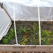 winter garden update u2014 fair forks