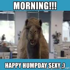 Sexy Hump Day Memes - morning happy humpday sexy hump day meme generator