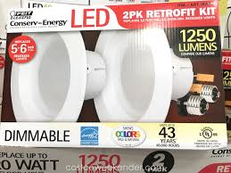 Costco 14 Dimmable Led Ceiling Light Ceiling Designs
