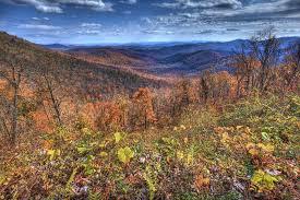 fall foliage peak continues cherokee cherokee nc