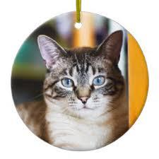 siamese cat ornaments keepsake ornaments zazzle