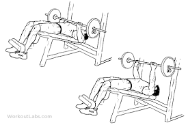 Bench Press For Beginners Aesthetic Chest Workout For Beginners Health Temple