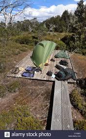 tent platform at a campsite along the overland track tasmania