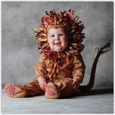 Baby Lion Costume Tom Arma Pumpkin Costume Tom Arma Lion Web 12 18 Month Fall