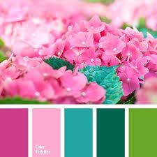 Pink Color Scheme Best 25 Spring Colors Ideas On Pinterest Spring Color Palette