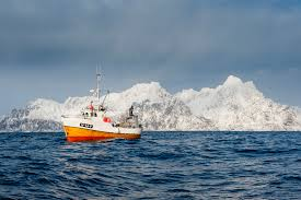 the lofoten islands norway there but for the grace of cod