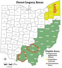 Ohio forest images Ohio dnr forestry forest legacy program jpg