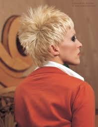 pic of back of spiky hair cuts short cropped hairstyle with a spiky silhouette