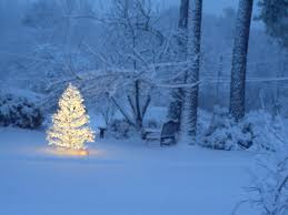 Snowy Christmas Pictures | not just an ordinary christmas snowy christmas tree christmas