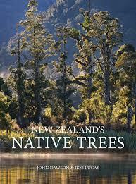 native plants of new zealand new zealand u0027s native trees standard edition