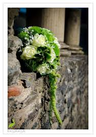 Metz Flowers - 17 best images about lenes photos pick a flower on pinterest