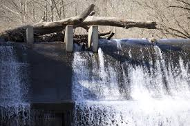 Patapsco State Park Map by Bids Set To Go Out For Removal Of Bloede Dam At Patapsco Valley