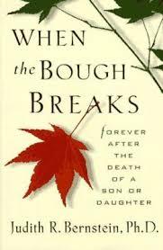 bough breaks book judith