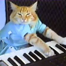 Cat Playing Piano Meme - keyboard cat know your meme