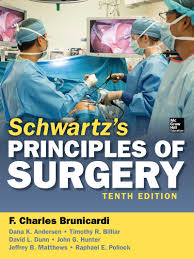 Perineal Dissection Of Synchronous Abdominoperineal Colon Rectum And Schwartz U0027s Principles Of Surgery 10e