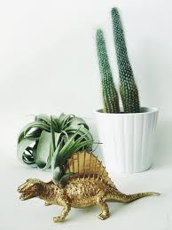 Small Desk Plants by Small Gold Spinosaurus Dinosaur Planter Air Plant Dinosaur