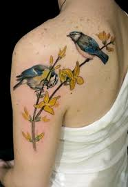 30 lovely bird ideas nenuno creative