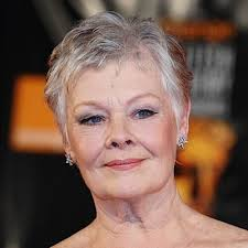 judi dench hairstyle front and back of head judi dench hairstyle front and back of head dame judi dench in