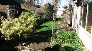 project spotlight beaverton backyard transformed by portland