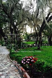 Florida nature activities images 107 best ocala marion in print images marion county jpg