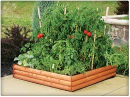 backyards gorgeous 86 best images about vegetable garden ideas