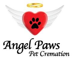 cremation san diego angel paws pet cremation san diego