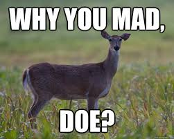 Doe Memes - why you mad doe memes quickmeme