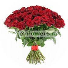 buy roses buy roses cheap wholesale prices from n flowers