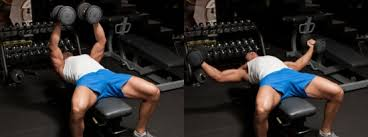 Dumbbell Exercises Chest No Bench - chest day 101 top dumbbell exercises the zone